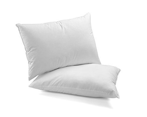 Continental Bedding Set Of 2 Double Down Surround Pillows